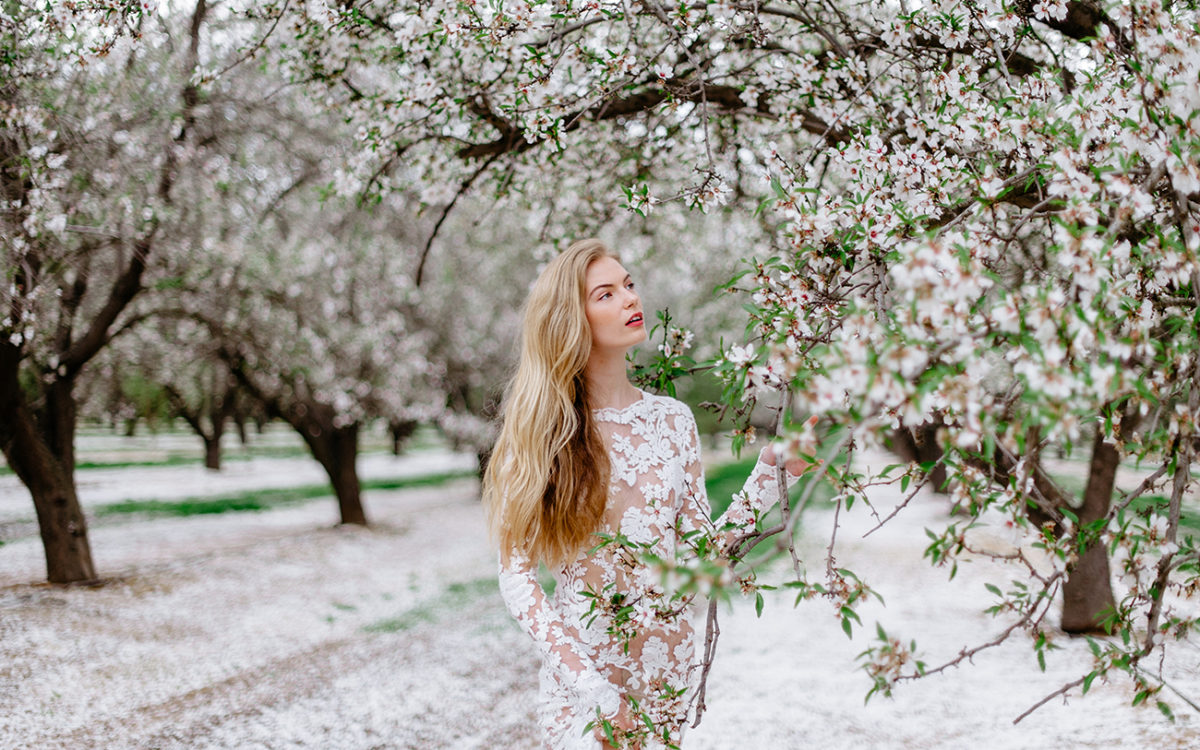 Almond Blossoms Sessions